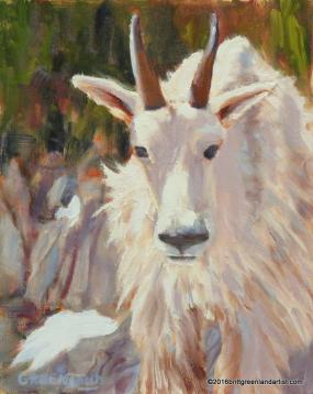 mountaingoat10x8