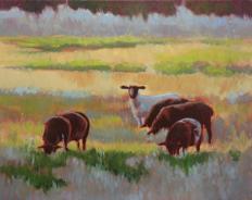 Shaw Island Sheep 16x20