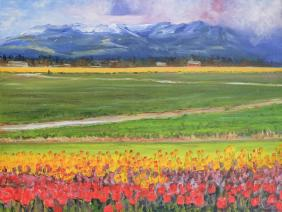 skagitvalleytulips18x24