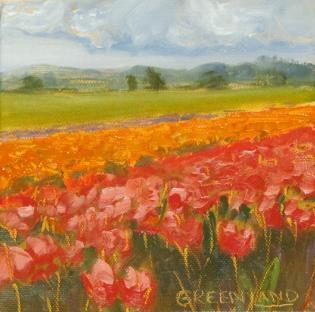 tulipssquare6x6
