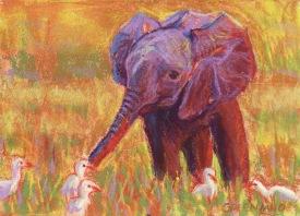 Baby Elepant, pastel on masonite, 5x7